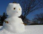 今は雪あそびができるよ!